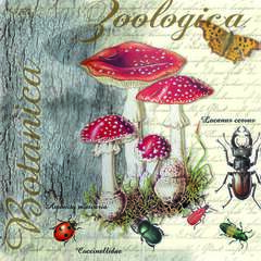 Napkin Lunsj Fly Agaric And Beetle
