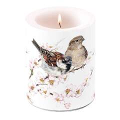 Candle Big Sparrows Blossom