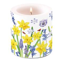 Candle Small Narcissus Love