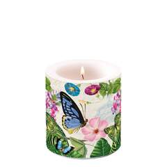 Candle Small Romantic Pure