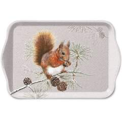 Tray Melamine 13X21cm Squirrel In Winter