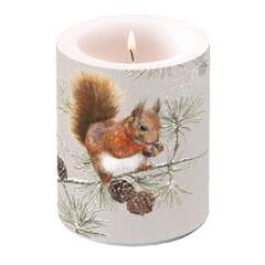 Candle Big Squirrel In Winter